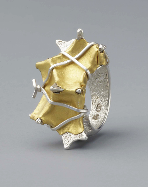 Enhancement 8, 2012, ring